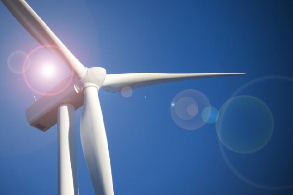 Ekologiczne plany Ikei zrewolucjonizują świat?