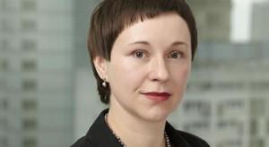 Polski rynek powierzchni handlowych osiągnął dojrzałość - raport