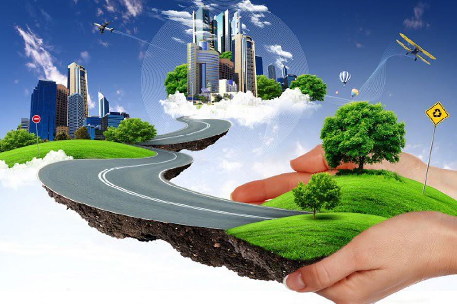 Sytuacja na rynku zielonego budownictwa - raport