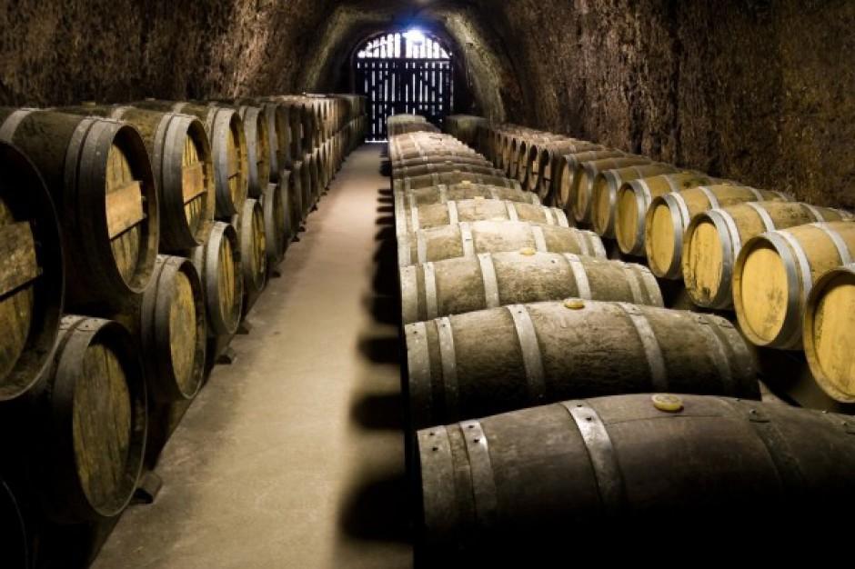 Turystyka winiarska nową atrakcją Podkarpacia