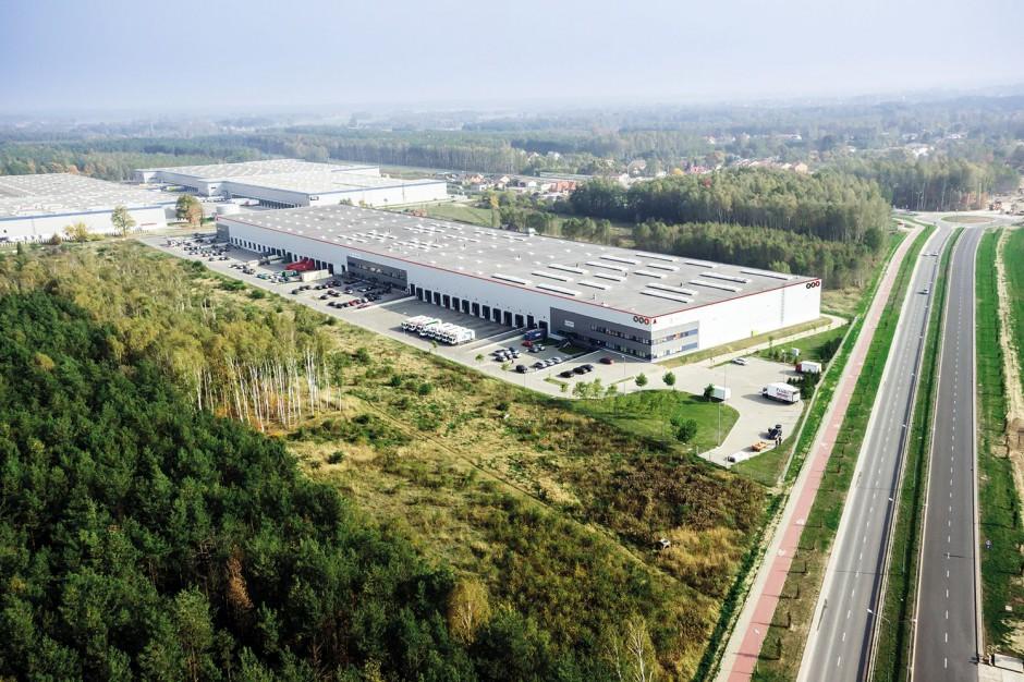 Hutchinson Poland chce więcej powierzchni magazynowej w Łodzi