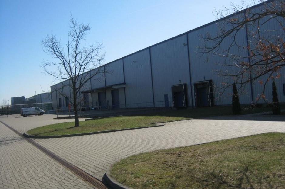 Dystrybutor podłóg i drzwi w Annopol Business Park