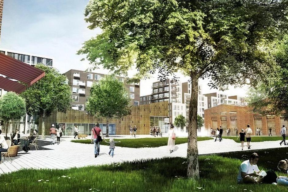 Jak zostaną zagospodarowane Wolne Tory w Poznaniu?