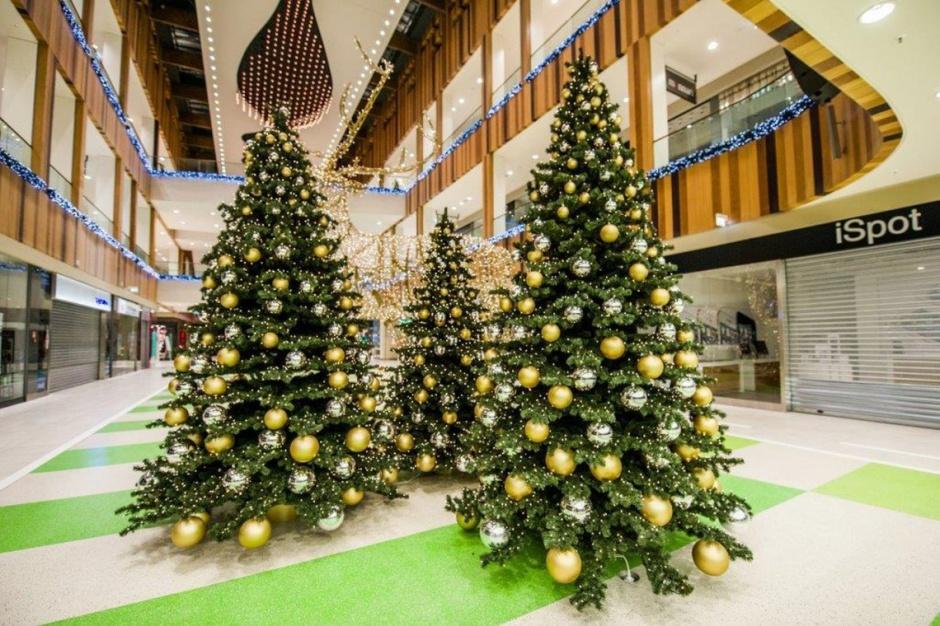 Zielone Arkady w świątecznej odsłonie