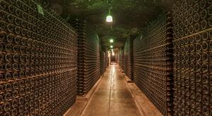 Winnice hitem turystycznym Podkarpacia