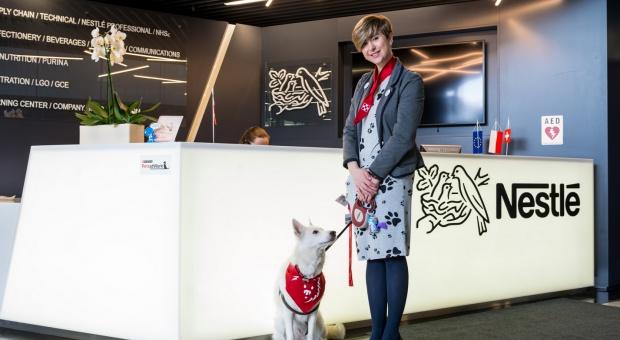 Jak się pracuje w biurze z ...psem?