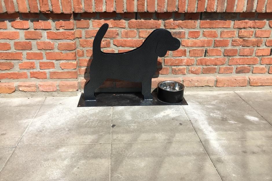 Na zakupy do Ferio Wawer zabierz psa