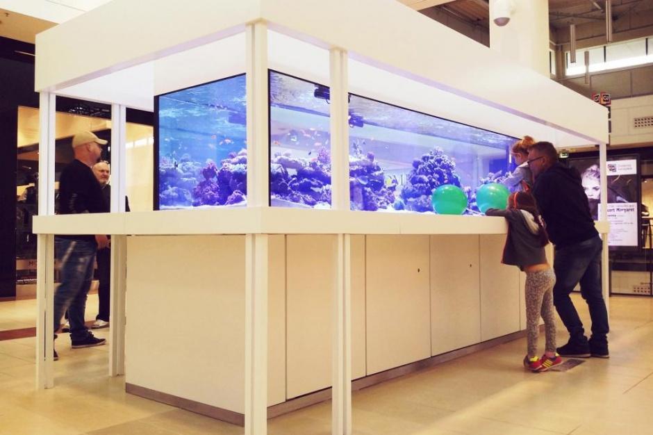 Cztery metry długości i tysiące litrów pojemności - w nowej strefie Galerii Jurajskiej