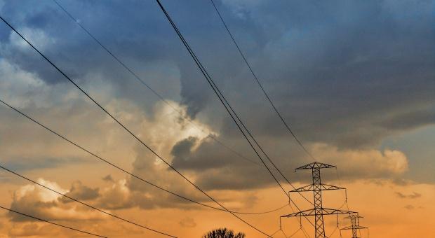 Energetyczne partnerstwo pomoże firmom w ograniczaniu zużycia energii?