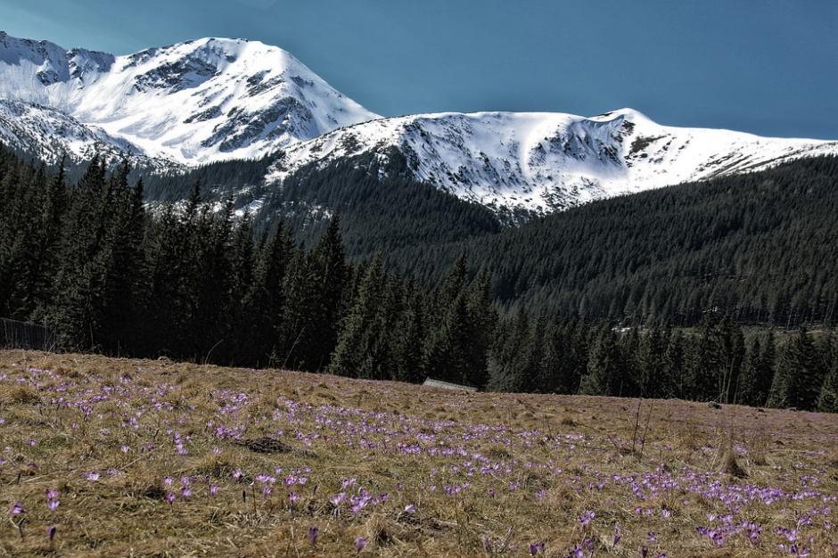 Turyści ze Wschodu świętują pod Tatrami