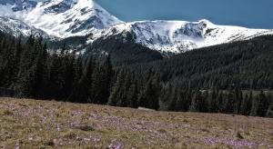 Turystyczne oblężenie w Tatrach