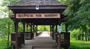 Hotelarze z Białowieży mówią nie dla decyzji Lasów Państwowych