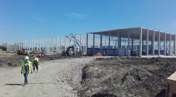 Hillwood wybuduje w Zgorzelcu potężne centrum logistyczne