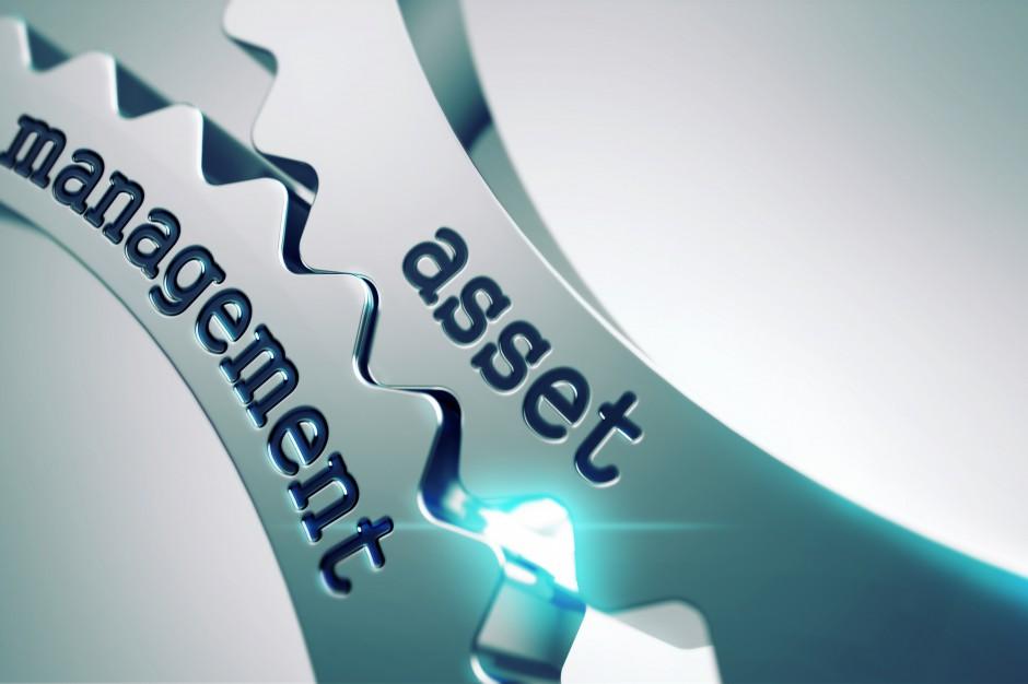 Sukces w rękach asset managera