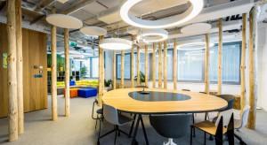 Kreatywny las w biurze?