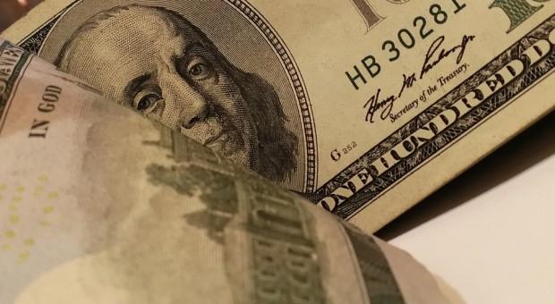 Dolar dołuje