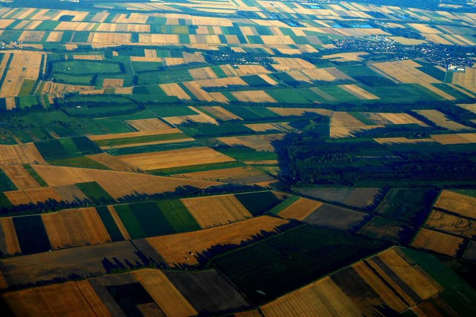 Suwalska SSE sprzedaje ponad 40 ha gruntów