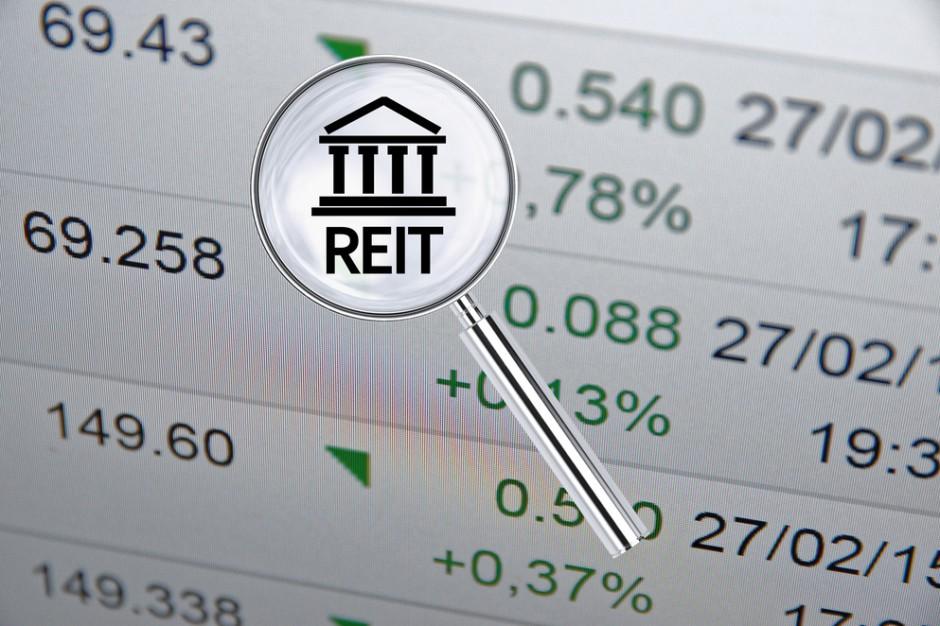 Zespół ekspertów chce poszerzyć ofertę instrumentów do inwestowania o REIT-y