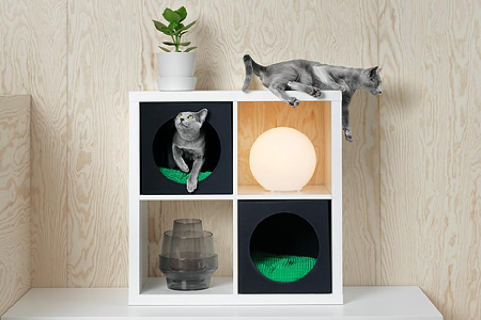 Ikea chce podbić serca amatorów zwierząt