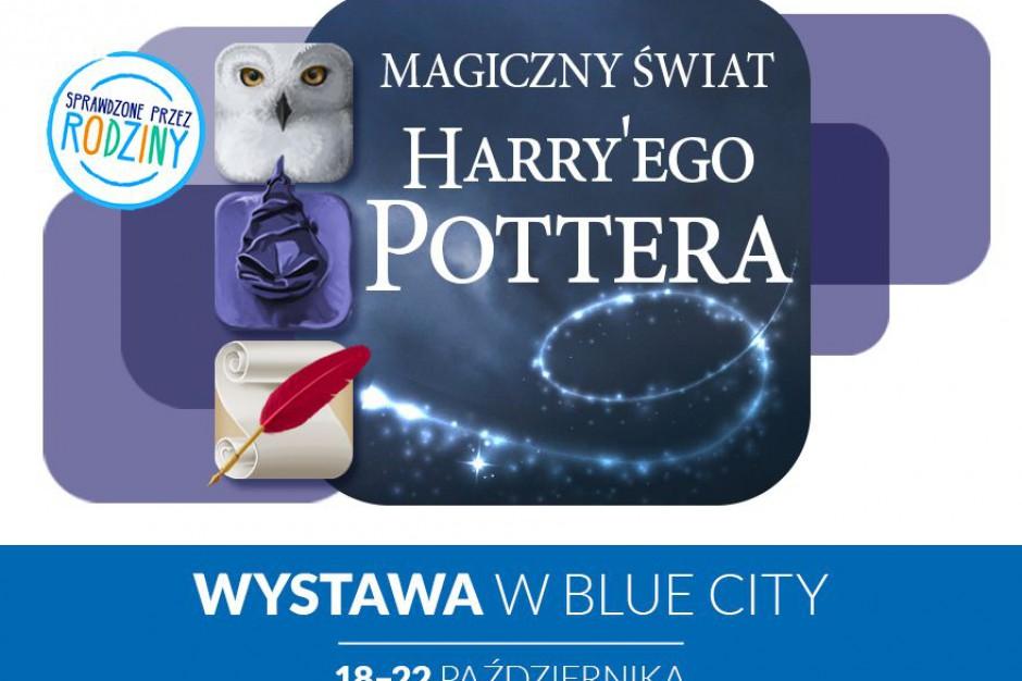 W Blue City pojawi się oferta dla... zainteresowanych magią