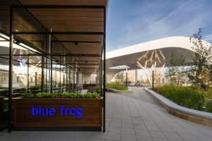 Blue Frog już po pierwszym otwarciu