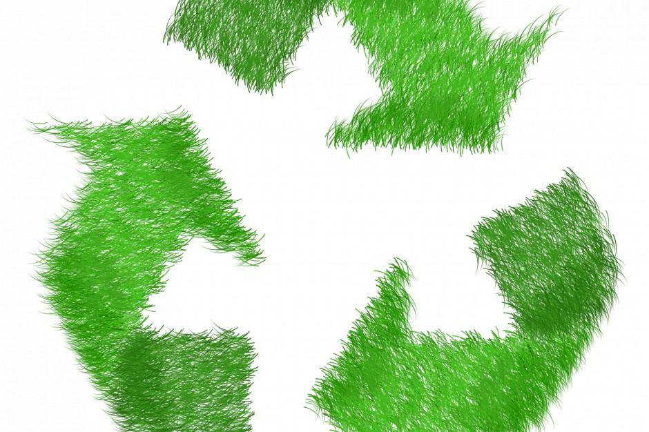 Opłata recyklingowa: czy realnie wpłynie na problem foliówek?
