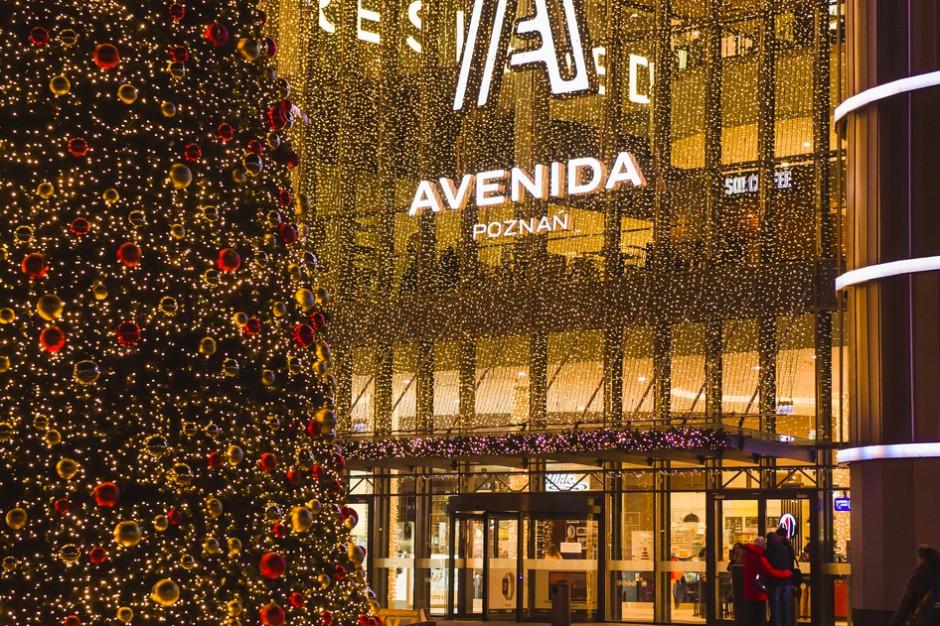 Avenida szykuje się na święta