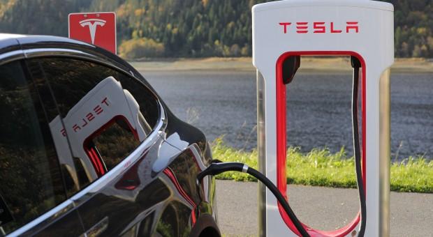Tesla szuka lokalizacji na budowę fabryki