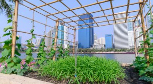 Miejskie farmy przyszłością centrów handlowych?