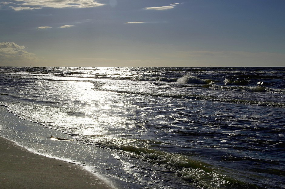 Sinice w Bałtyku. Które plaże zamknięte?