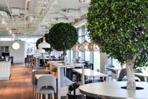Świeże wnętrze w Marynarska Business Park