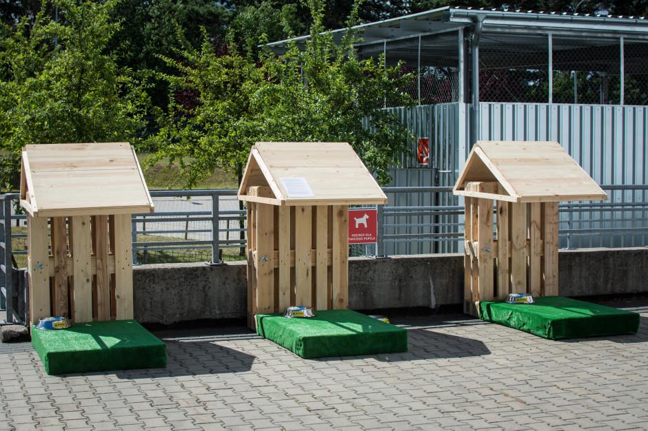 Psie parkingi pojawiły się w PH Matarnia