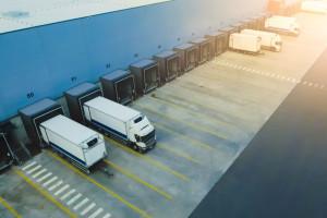 Logistyka powiększa zespoły
