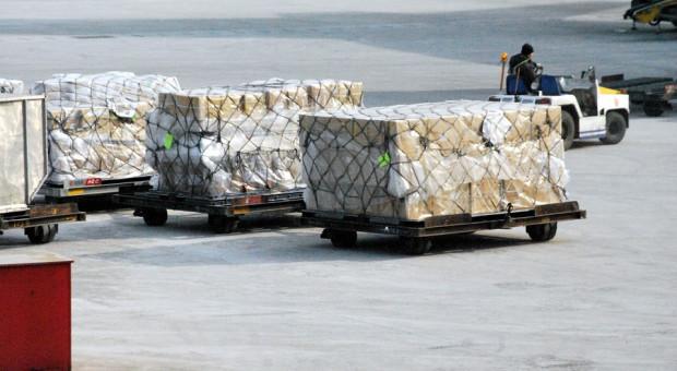 Zdolności przeładunkowe portów znacznie wzrosną