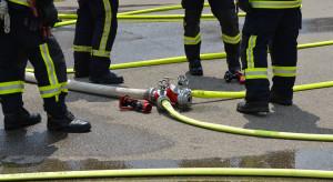 Pożar hali w Gdańsku opanowany. Trwa dogaszanie