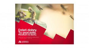 Pół miliona pszczół nad stołecznymi biurowcami