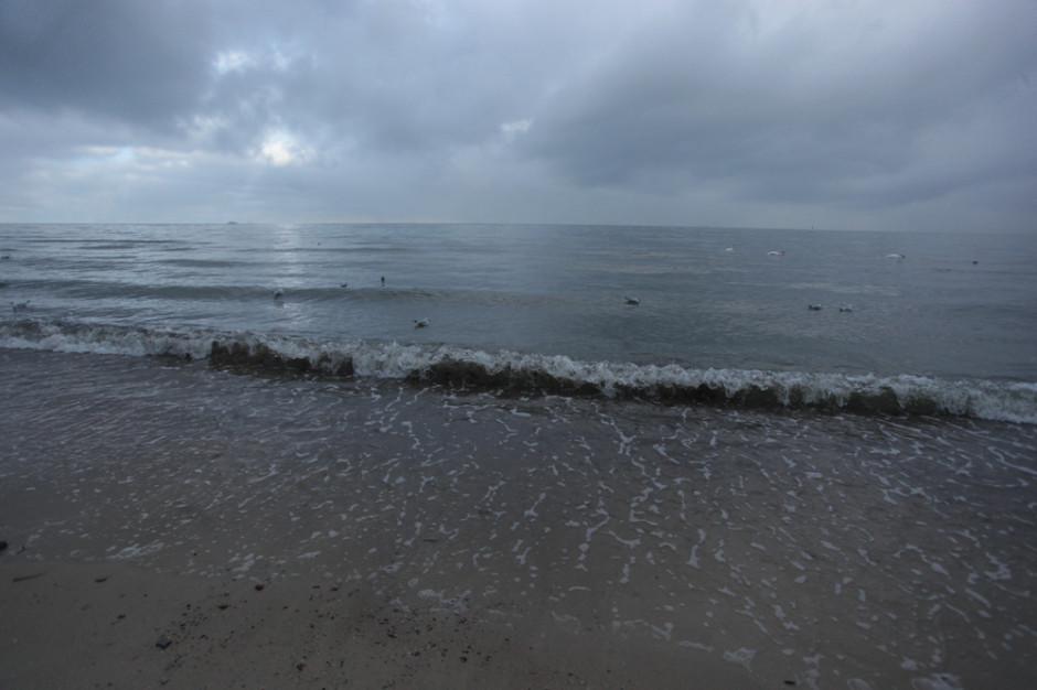 Na plaży w Gdańsku-Stogach nie będzie portowych inwestycji