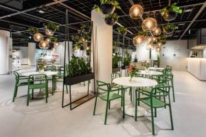IKEA zadebiutuje w Toruniu. I to jeszcze w październiku