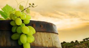 Nowe centrum będzie promować turystykę winiarską Małopolski