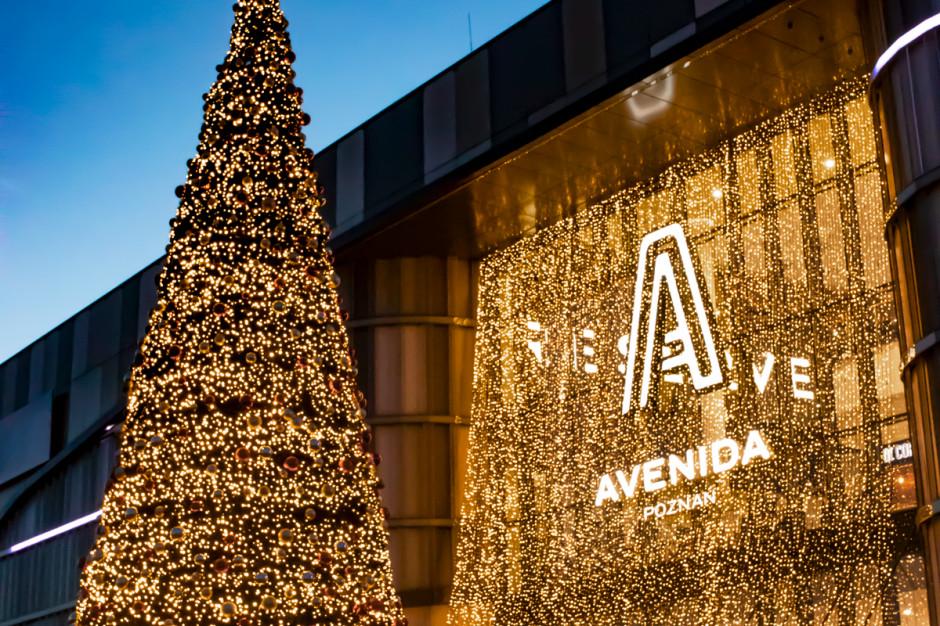 Magiczny czas w Avenidzie