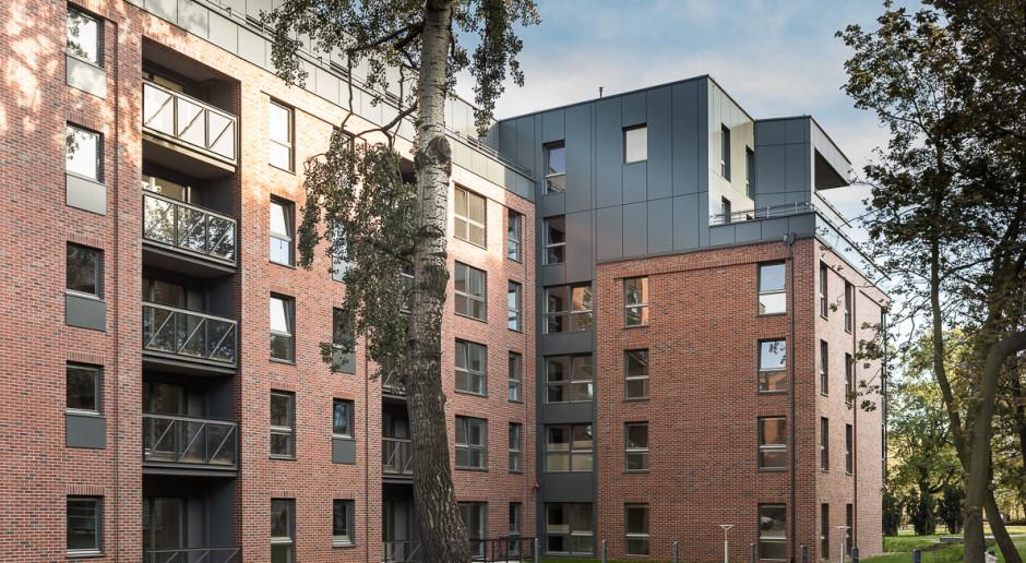 Budownictwo mieszkaniowe pobudza rynek najmu w Polsce