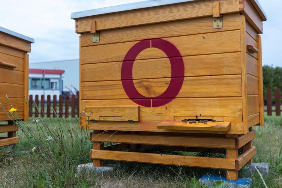 Parki logistyczne Segro zyskały nietypowych najemców