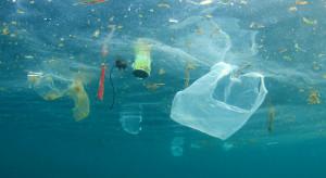 Austria zakaże plastikowych toreb na zakupy