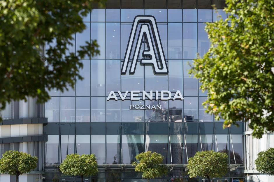 Avenida w Poznaniu dla fanów sneakersów