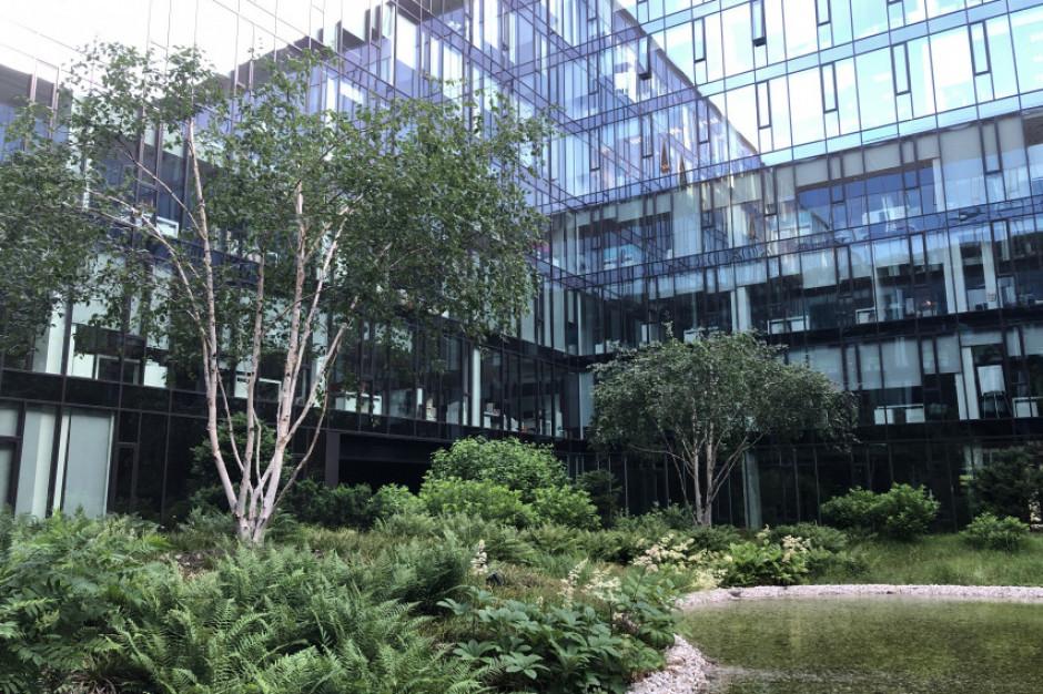 Rośliny w budynkach komercyjnych to nie tylko dekoracja, ale inwestycja w ludzi i ich zdrowie
