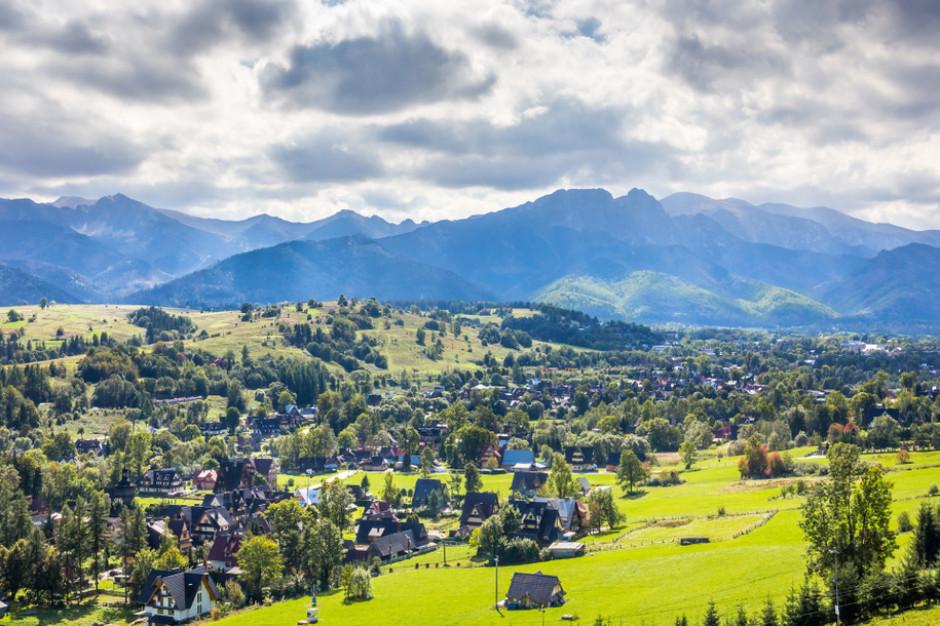 Szlaki w Tatrach zamknięte. W tym roku krokusy będziemy podziwiać na monitorach