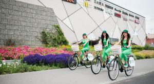 Zielone Arkady w obliczu modernizacji dróg
