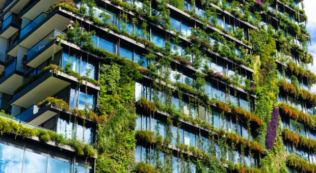 Hotel, biurowiec, centrum handlowe... Szukamy projektów z eko-misją