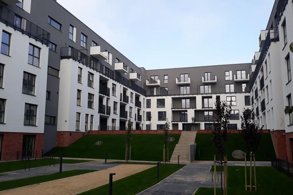 2019 rok na rynku mieszkań na wynajem