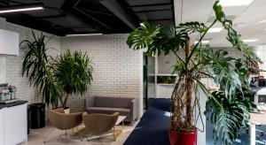 Jak za pomocą designu zmniejszyć poziom stresu w biurze?